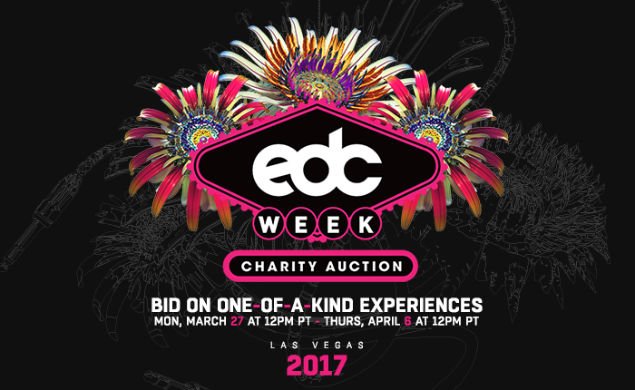 Bid on These Awesome Experiences in the EDC Week Charity Auction