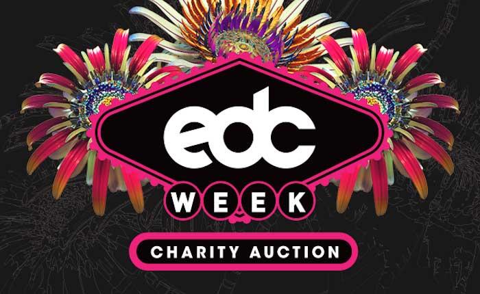 edc_week_2017_an_charity_auction_wave_2_1080x1080_r04