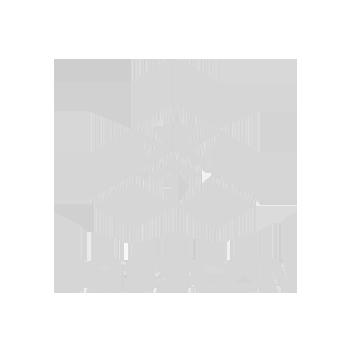 basscon logo